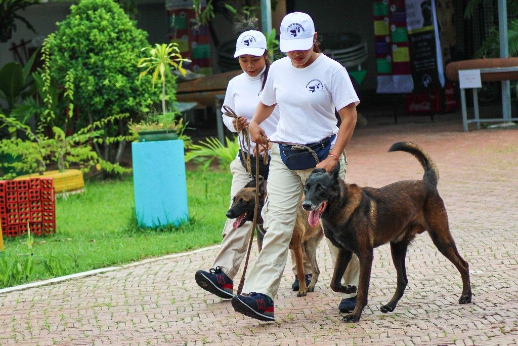 NPA detection dogs
